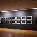 Exposición: Fosil