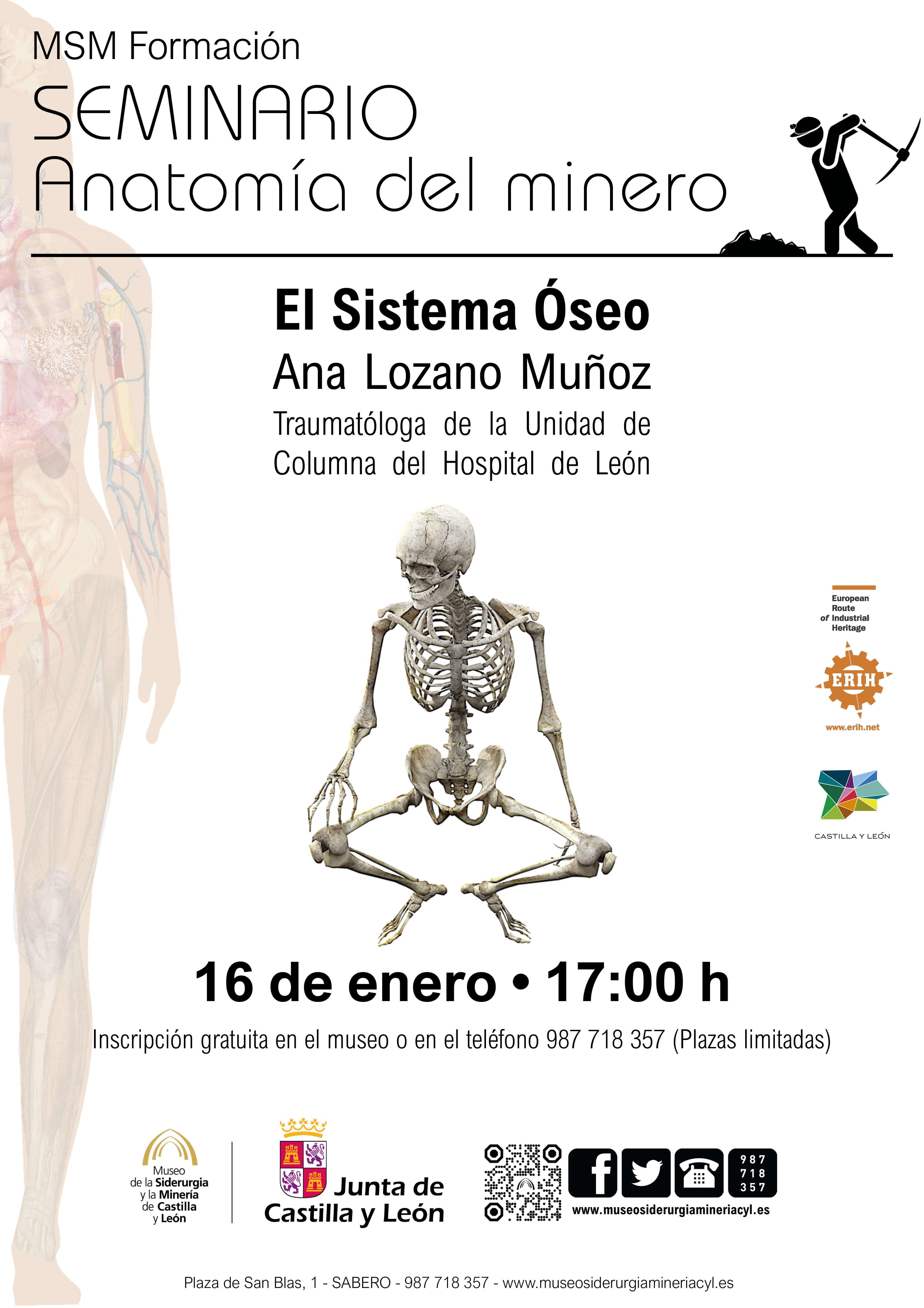 """MSM FORMACIÓN: """"ANATOMÍA DEL MINERO: EL SISTEMA ÓSEO""""."""